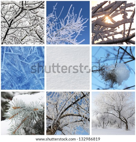 collage with photos of nature at winter - stock photo