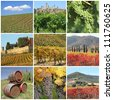 collage with scenic images of tuscan vineyards, Italy, Europe - stock photo