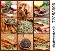 Collage with Spices - stock photo