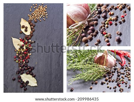 Collage with Spices and herbs, Spices set.Various seasonings for cooking - stock photo