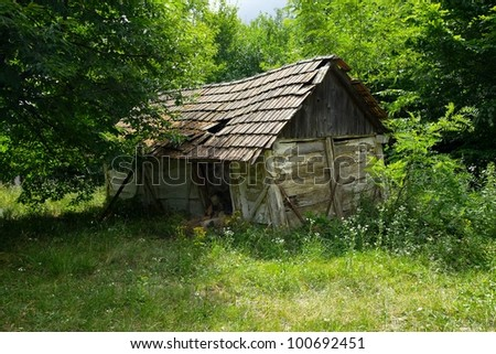 Collapsed, old hut in the forest - stock photo
