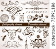 Collect Calligraphic and Floral element for design, illustration - stock vector