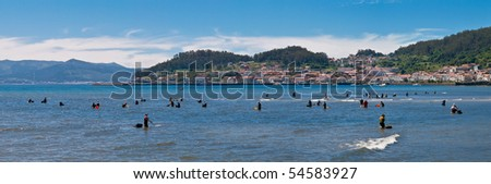 Collecting shellfish in Galicia. - stock photo