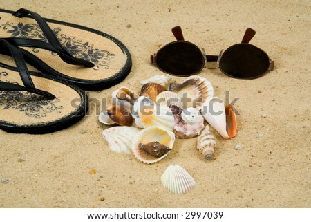 Collecting Shells on the Beach.  Seashells, Sandals, and Sun Glasses on a Sandy Beach - stock photo
