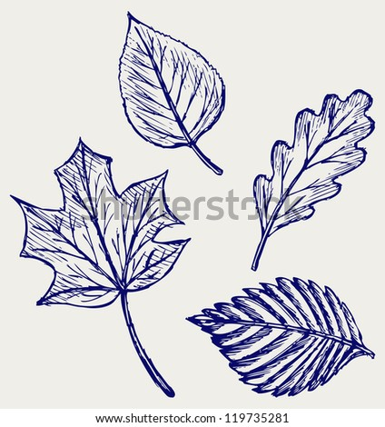 Collection autumn leaves. Doodle style. Raster version - stock photo