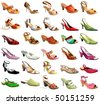 Collection beautiful feminine footwear on white background, is insulated - stock photo