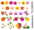 Collection Beautiful Flowers, Isolated On White Background - stock vector
