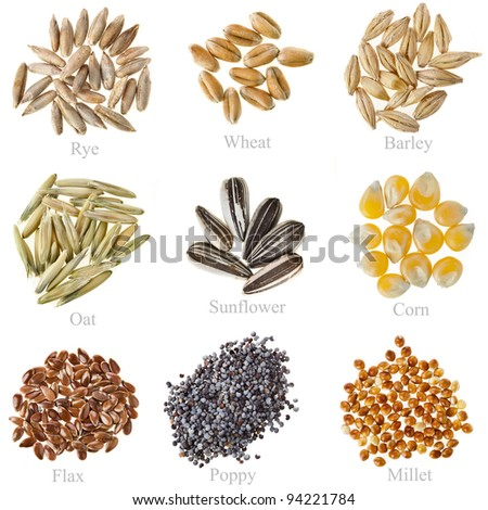 Collection Cereal Grains and Seeds  : Rye, Wheat, Barley, Oat, Sunflower, Corn, Flax, Poppy, Millet closeup isolated  on white - stock photo