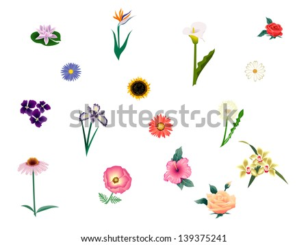 collection flowers