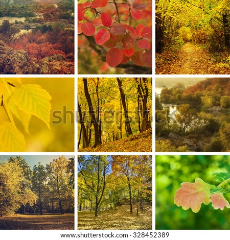 Collection from different kinds of autumn seasonal  backgrounds - stock photo
