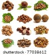 Collection nut - stock photo