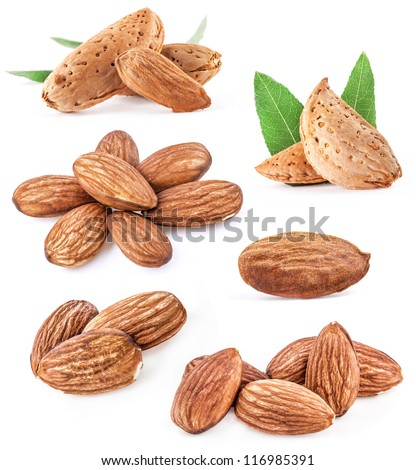 Collection of almond nuts Isolated on a white background - stock photo