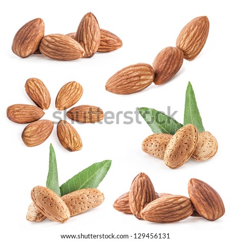 Collection of almond nuts with leaves isolated on white background - stock photo