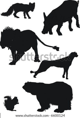 collection of animal silhouettes inclusive polar fox, lion, polar bear, wild boar, squirrel and cheetah - stock photo