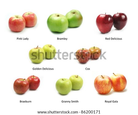 Collection of apples on white background - stock photo