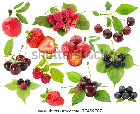 collection of berries - stock photo