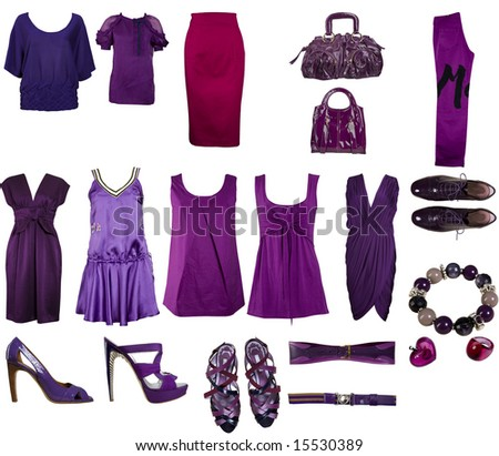 collection of bilberries clothes and accessories - stock photo