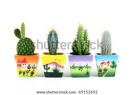 Collection of cactuses isolated on white. - stock photo