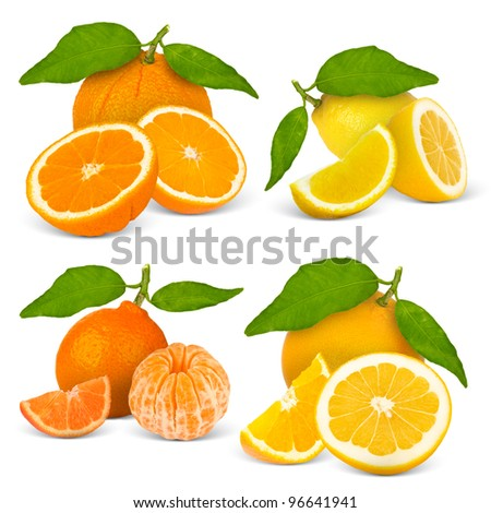 Collection of citrus fruit isolated on white - stock photo