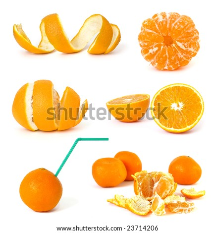 Collection of citrus on a white background - stock photo