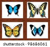 Collection of colored butterflies in boxes - stock vector
