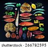 Collection of colorful and dry autumn leaves and tree seeds with different shapes, isolated on black background - stock photo