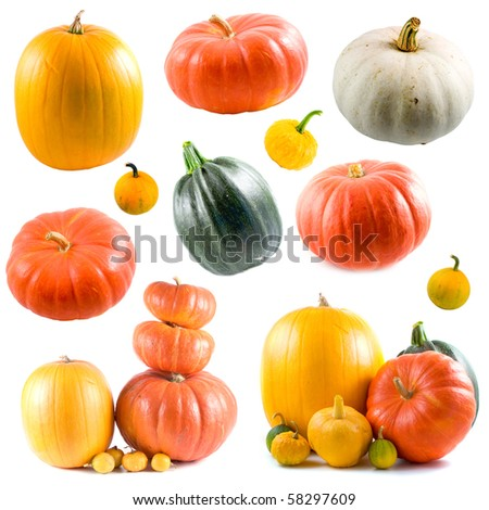 Collection of colorful pumpkins isolated on white background - stock photo