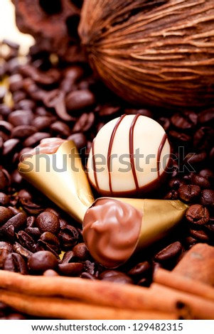 collection of different chocolate pralines truffels on golden brown background macro