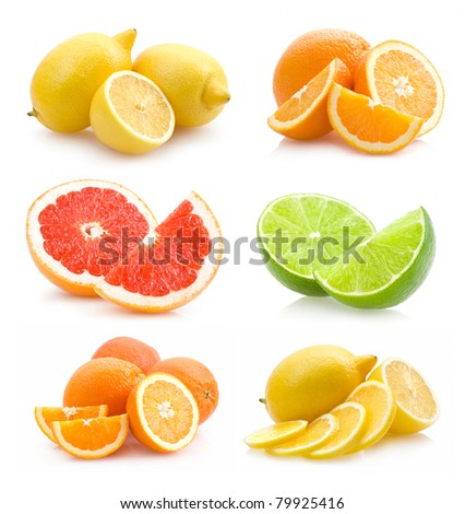 collection of different citruses - stock photo