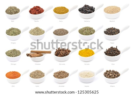 Collection of different spices with names in white pans, isolated - stock photo