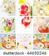 Collection of eight still live photos for Easter in fresh colors - stock photo