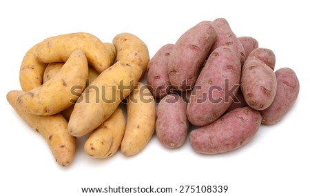 collection of fingerling potatoes on white background  - stock photo