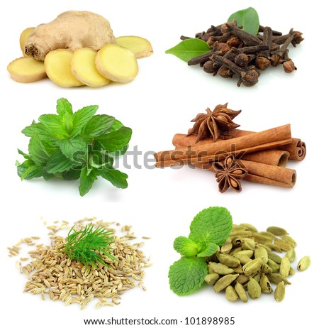 Collection of fragrant spices on white - stock photo