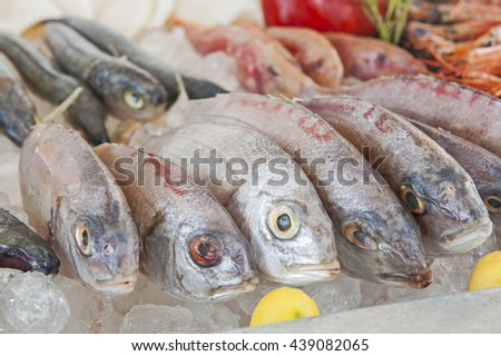 Collection of fresh bream fish on display at seafood restaurant buffet - stock photo