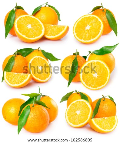 collection of fresh oranges isolated on white background - stock photo