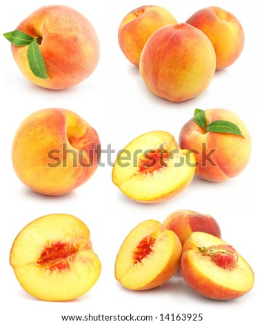 collection of fresh peach fruits with cut and green leafs isolated on white background
