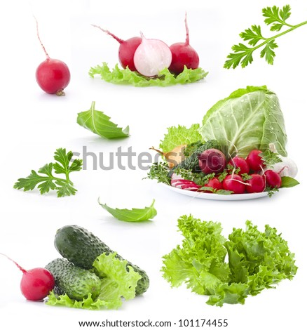 Collection of fresh vegetables with green leaf isolated on white background