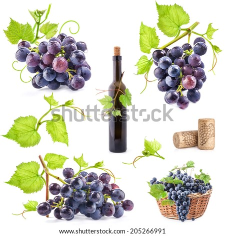 Collection of grapes, bottle and cork, Isolated on white background - stock photo