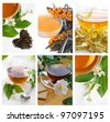 Collection of green and black tea with herbs and flowers - stock photo