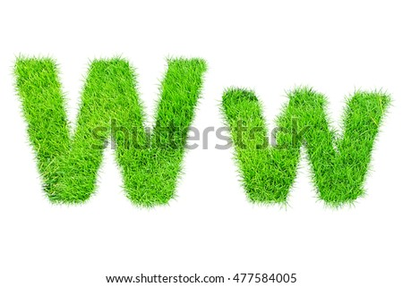 collection of green grass,eco font isolated on white background.w