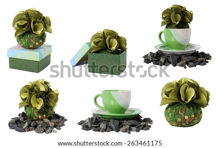 collection of green plants with a variety of places, isolated on white background - stock photo