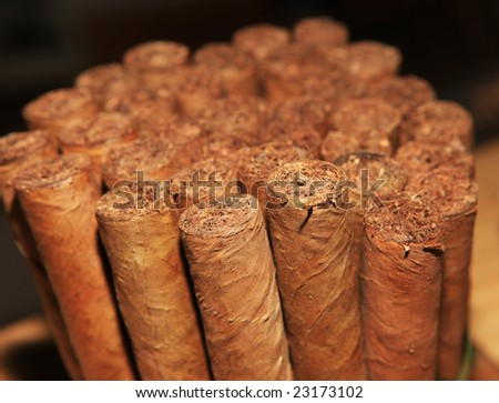Collection of handmade cigars - stock photo
