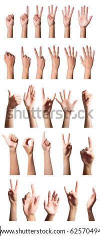 Collection of hands over white - stock photo