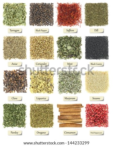 Collection of herbs and spices isolated on white - stock photo