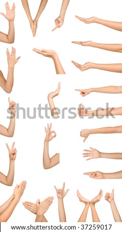 Collection of high resolution female hand gestures isolated on white - stock photo