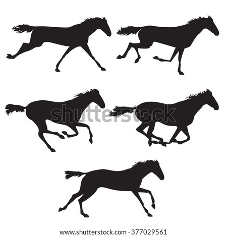Collection of horse race, horse jump and horse run. Silhouettes of horses. Black horses on isolated background. Set of wild horses.  horse collection - stock photo