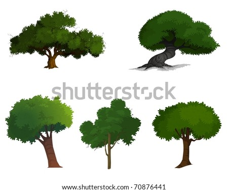 Collection of Illustrated trees