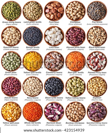 collection of legumes isolated on white with labels - stock photo