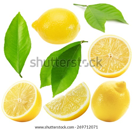 collection of lemons isolated on the white background - stock photo