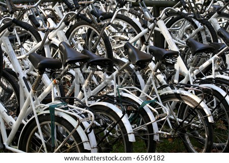 collection of numerous white bicycles